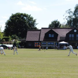 Weekly Roundup – 2nd XI victorious and Saxons edge thriller 12/6/21